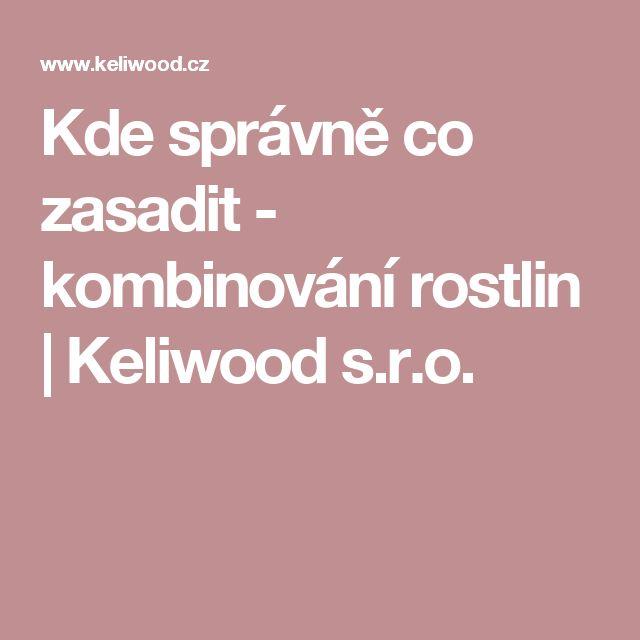 Kde správně co zasadit - kombinování rostlin   Keliwood s.r.o.