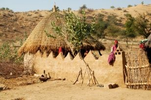 Thar Desert thatched roof mud wall brush fence