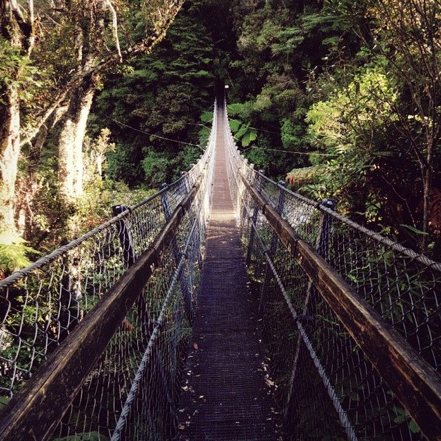 Kaitoke Regional Park in Wellington, New Zealand = Rivendell  Over 6000 acres!