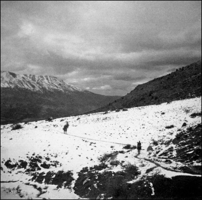 ΦΩΤΟΓΡΑΦΟΙ ΣΤΗΝ ΑΛΒΑΝΙΑ-ΕΛΛΗΝΟΙΤΑΛΙΚΟΣ ΠΟΛΕΜΟΣ-1940-Άτιτλο, πανόραμα οροσειράς Τομάρι. Χωρίς να αλλοιώνει το μεγαλειώδες της άσπιλης φύσης, ο Χαρισιάδης εισήγαγε συχνά την ανθρώπινη φιγούρα, είτε ως εικαστική στίξη στο τοπίο είτε ως στοιχείο κλίμακας, όπως οι δύο ιππείς κατά μήκος και διαγώνια στο μονοπάτι της χιονισμένης πλαγιάς.