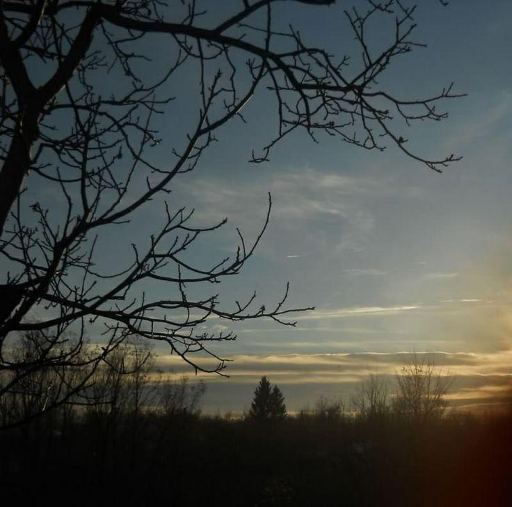 Buni sunset.jpg