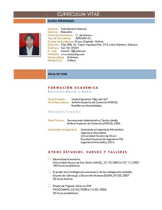bolivia 2017 plantilla de curriculum vitae pinterest curriculum