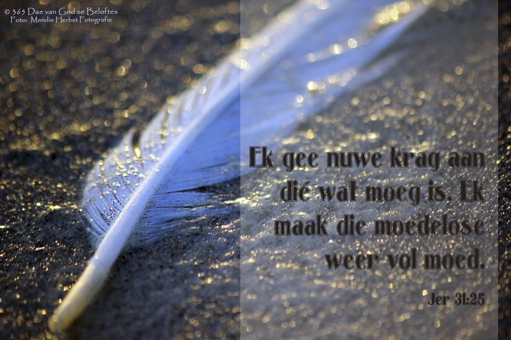 Bybelvers: Jer 31:25 Ek gee nuwe krag aan dié wat moeg is, Ek maak die moedelose weer vol moed
