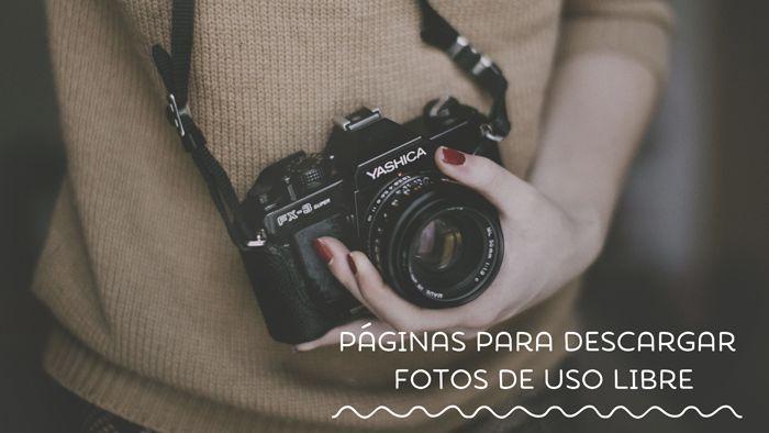 Páginas para descargar fotos de uso libre bonitas | Miss Lavanda