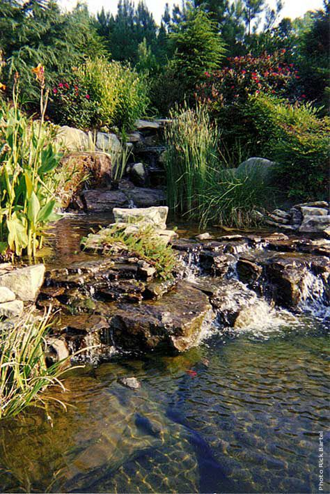backyard landscaping ideas 44 best fish pond oasis images on backyard 12715