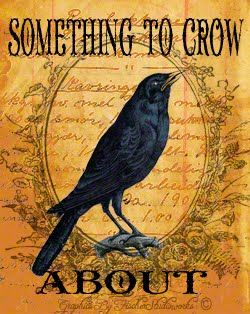 Crows Ravens: Something to #Crow About.