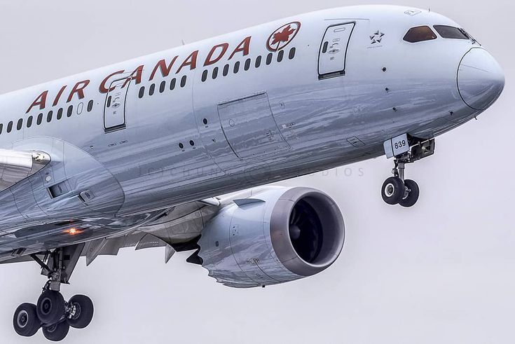 Another gloomy day, another dollar #FlyTheFlag #mapleleaf #aircanada #boeing #787 #dreamliner #yyz #pearsonpov #toronto #the6ix #tdot #imagesoftoronto #imagesofcanada #torontolife #torontoigers #toronto_insta #torontophoto #avgeek #aviationgeek #aviationdaily #instaplane #instagramaviation #boeinglovers #aviationphotography #megaplane #crewlife #airplanes #instaaviation #skiesmag