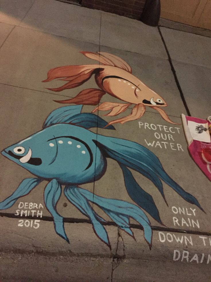Best Only Rain In The Storm Drain Images On Pinterest Rain - Beautiful street murals appear on roads only when it rains