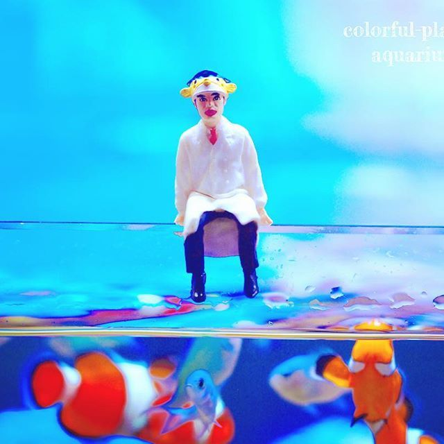 【colorful_planet.pasya】さんのInstagramをピンしています。 《さかなクンのガチャガチャやりました😊💕 * うちの魚達も大興奮😁 * #海水水槽#カクレクマノミ#デバスズメダイ#saltwaterfish#fish#マイアクアリウム#アクアリウム #sea#myaquarium#aquarium#coral#coralreef#saltwatertank#ファンタジー#ガチャガチャ#さかなクン#clownfish#olympus#olympuspen#マクロ#接写#penepl2#macro#フィギュア#figure》