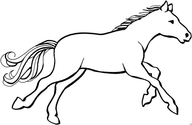 die 25 besten pferdebilder zum ausdrucken ideen auf