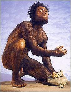 paleolithicum - Google zoeken