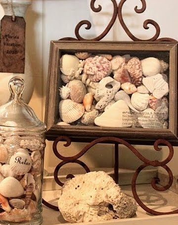 30 seashell collection display ideas beach decorating for Ideas for displaying seashells