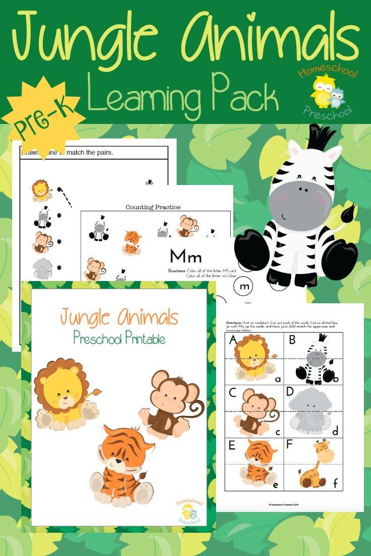 Preschoolers love animals! Teach or reinforce preschool skills with this fun jungle animal-themed preschool pack! | homeschoolpreschool.net