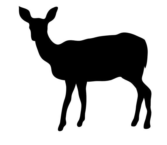 Pack of 3 Doe Stencils Made from 4 Ply Mat Board, 11x14, 8x10 and 5x7
