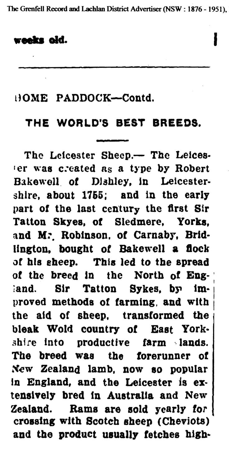 George Robinson of Carnaby Hall, Yorkshire, England, Sheep Breeder. Father of Elizabeth who married James Stockdale in Kirkburn, lived Blue Gum Flats, NSW, Australia.