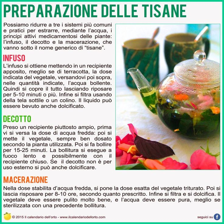 preparazione delle tisane