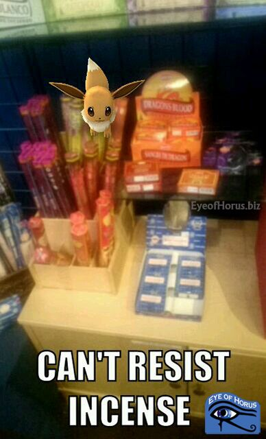 Photo of Pokemon Eevee in Incense Section at Eye of Horus in Minneapolis