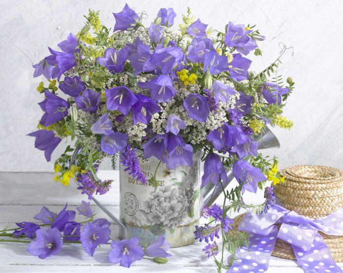 Доставки цветов, 25 цветов в букете колокольчики