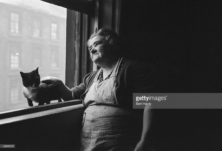 A Glaswegian woman and her pet cat at her home in the Gorbals The Gorbals tenements were built...