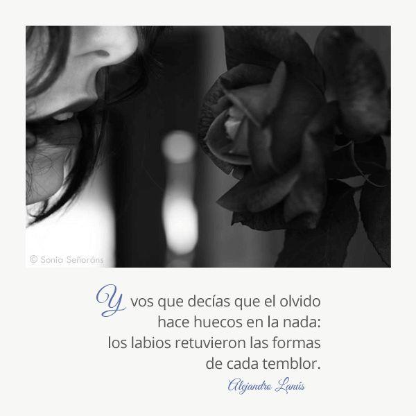 Y vos que decías que el olvido hace huecos en la nada: los labios retuvieron las formas de cada temblor. #Umbrales #AlejandroLanus #Aforismos