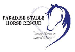 Paradise Stable Horse Rescue in Saskatchewan website link on http://www.bestcatanddognutrition.com/roger-biduk/canadian-animal-rescues-shelters/ Roger Biduk