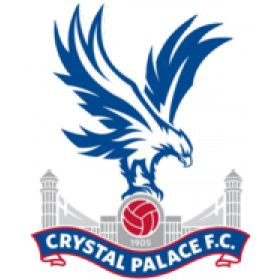 Crystal Palace Football Club is an English professional football club based in South Norwood, London. During the 2012–13 Football League ...