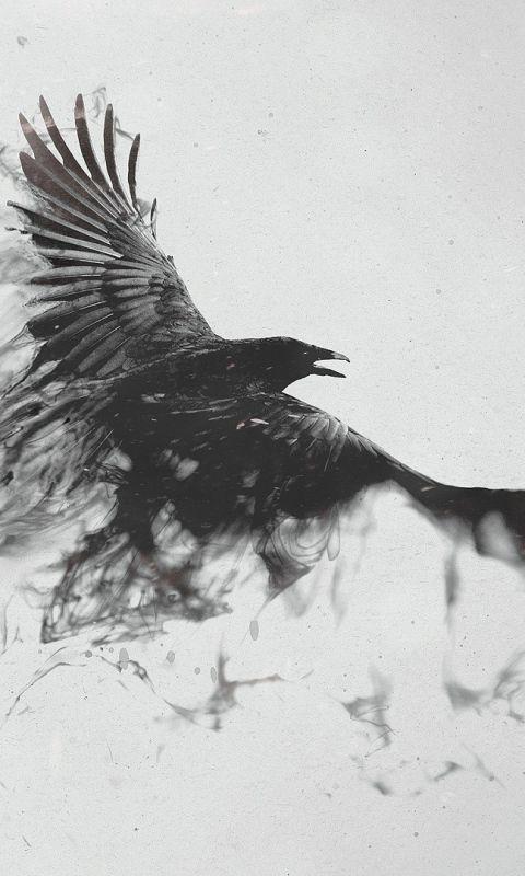 Download Wallpaper 480x800 Raven, Bird, Flying, Smoke, Black white HTC, Samsung Galaxy S2/2, Ace 480x800 HD Background