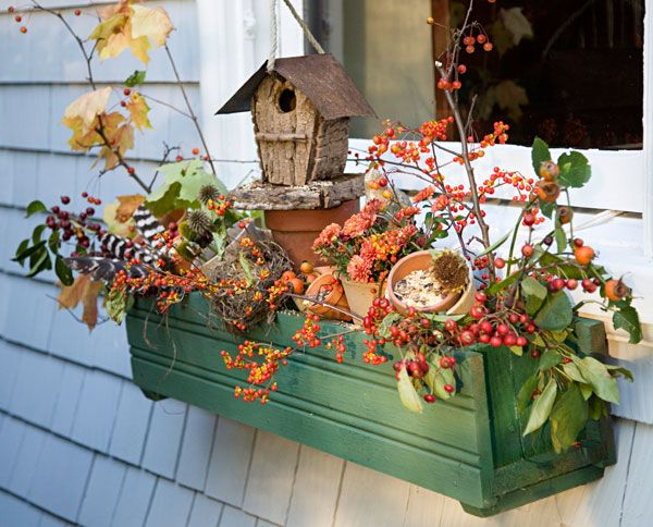 Fall plant live arrangements.  Wonder if ornamental cabbage grows around here.