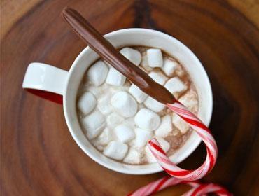 Mug Cake Stephens Hot Chocolate Mix