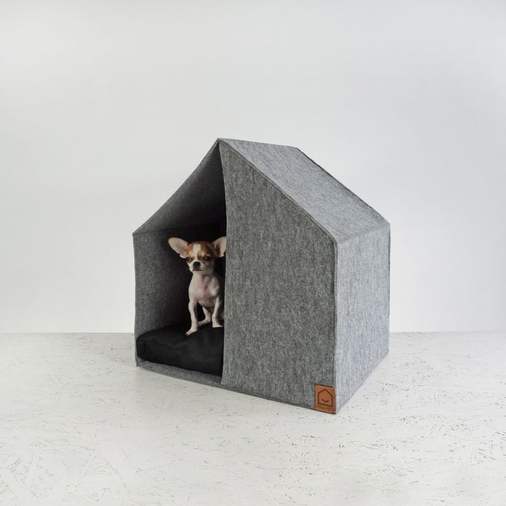 Modern Dog Beds and Feeders from HELLO PETS