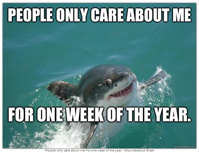 Celebrate Shark Week With Misunderstood Shark - Babble.com