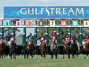 Gulfstream Park Racing & Casino is a racetrack and county-approved racino in Hallandale Beach, Florida, in the United States.