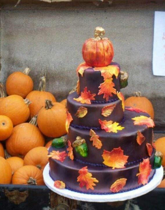 Cake Decorating Supplies Stamford Ct
