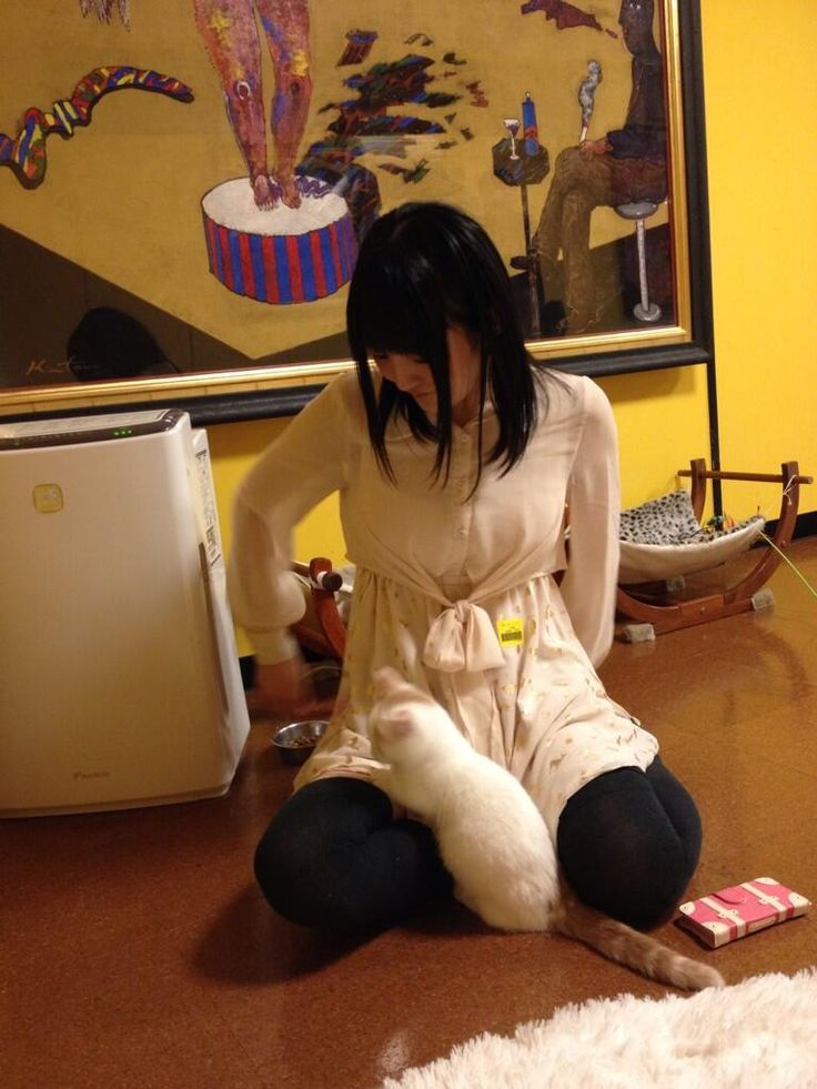 Twitter / suzakinishi: あすかがクシャミ連発してて、猫か明日香かわからなかった。可愛かった! 【洲崎】 pic.twitter.com/mRDvQzyQB0