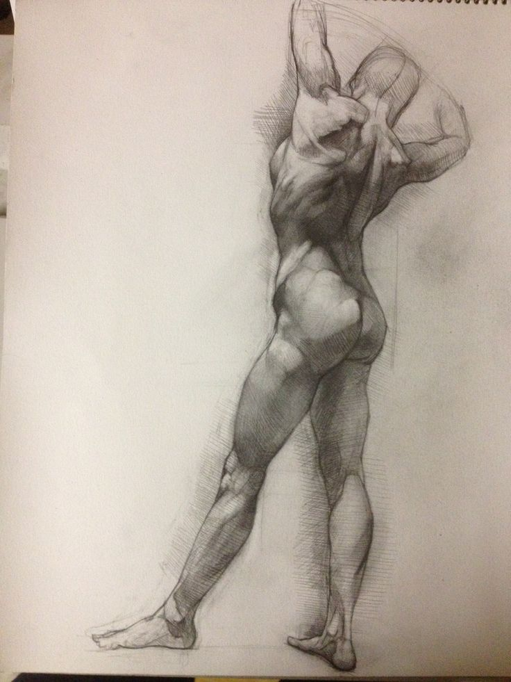 The 215 best Anatomy & Figure Drawings images on Pinterest ...