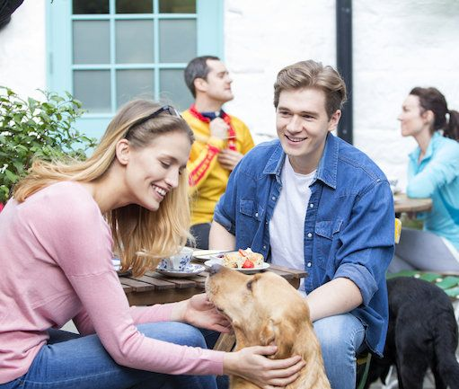 10 dog-friendly breakfast spots in Cape Town: You don't have to leave your canine companion at home when you head out for breakfast this weekend