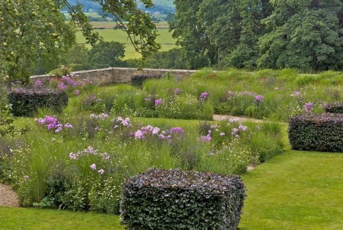 Blocks of copper beech in this informal garden with meadow flowers & grasses | Arne Maynard
