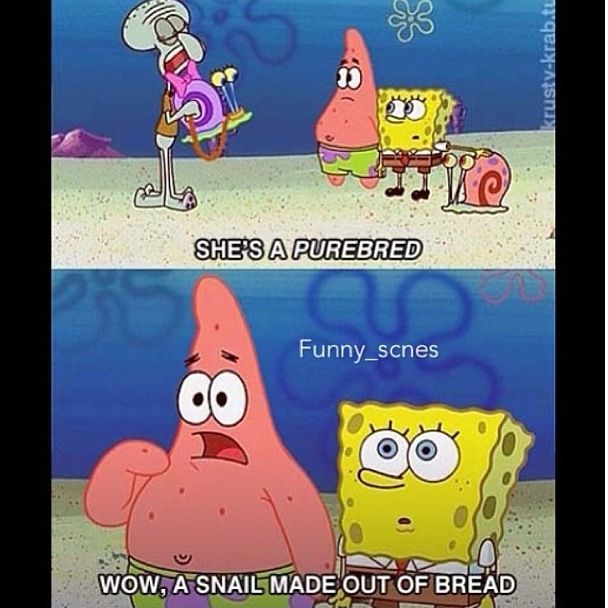 Spongebob Quote Pictures: 17 Best Images About My Sunshine When Skies Are Grey On