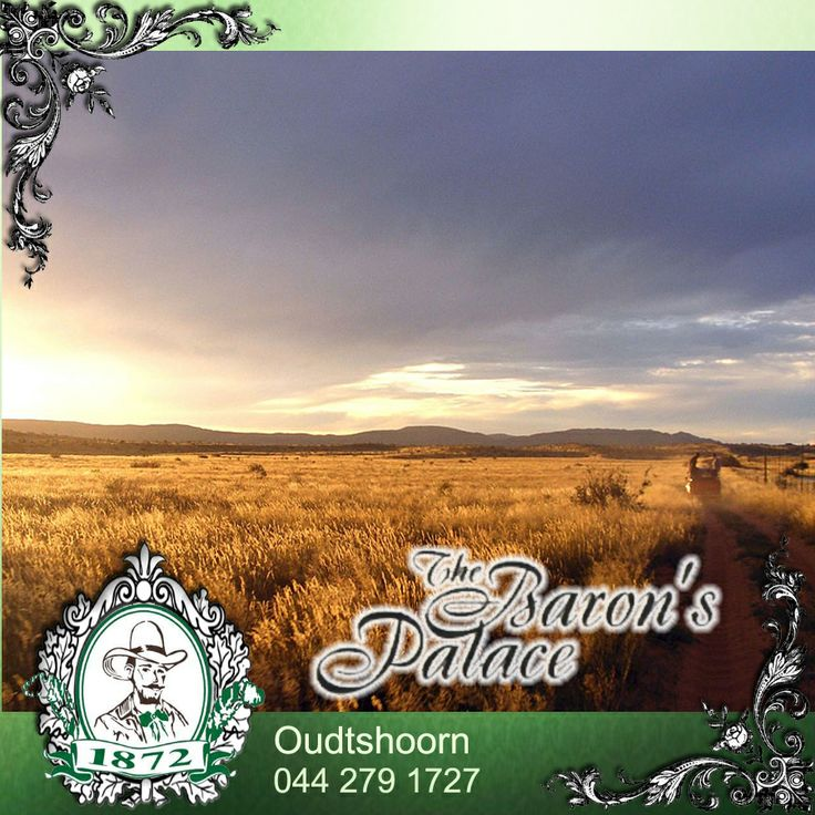 From the pure silence of a sheep farm to the bustle of a book festival, from a traditional Sunday lunch in a Victorian-era town to a strictly non-traditional Saturday night cabaret, and from a daisy extravaganza to a dance in the dust, the Klien Karoo offers a grand, if offbeat, South African overland experience. To read more, click: http://besociable.link/BQ #Karoo #overland #SouthAfricanexperience