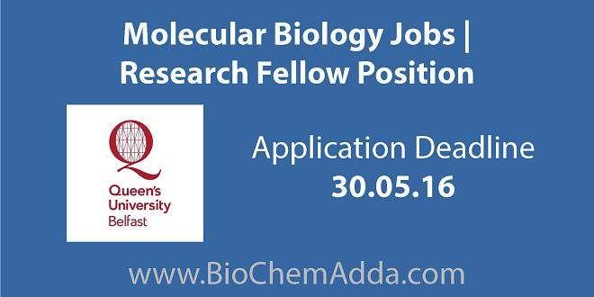 Molecular Biology Jobs | Research Fellow Position @ QUB