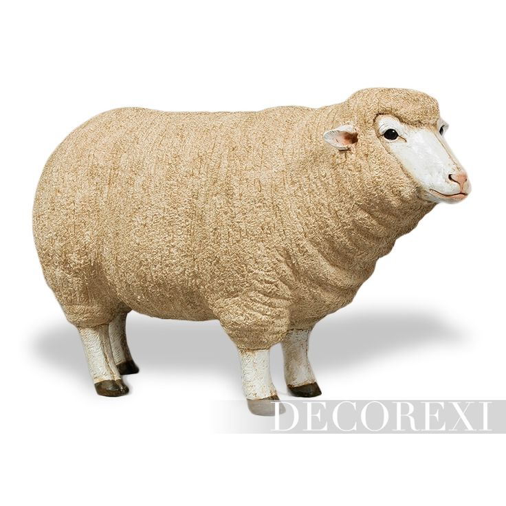 Life-size Merino Sheep
