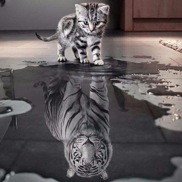 Un jour qd je serais grand...