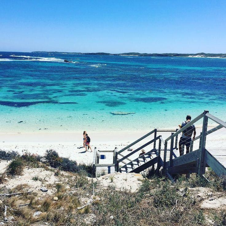 참 맑다! #퍼스 #perth #로트네스트 #rottnestisland #여행 #스노쿨링 #snorkeling by masnthesoul http://ift.tt/1L5GqLp