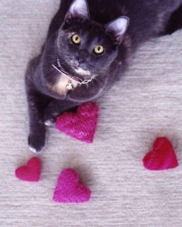 103 Best Diy Homemade Cat Toys Images On Pinterest Dog