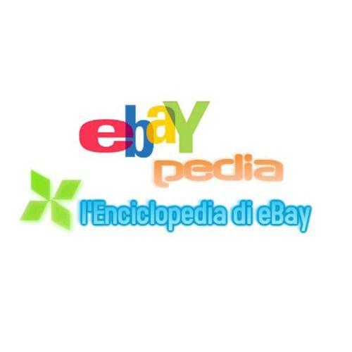 EBOOK - DropShipping e eBay (ebook di formazione + diritti di rivendita)