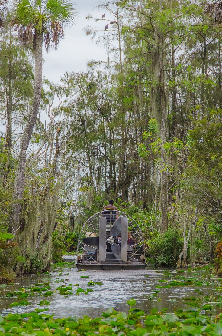 A swamp tour through the Florida Everglades. Billie Swamp Safari on the Big Cypress Seminole Reservation