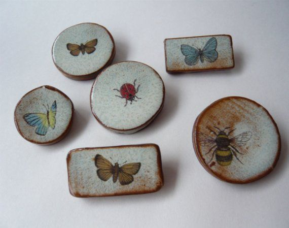 Insect Brooches