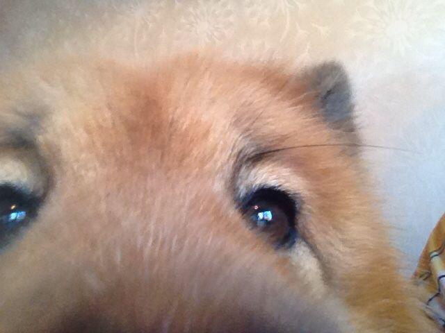 Nellys selfie ;)