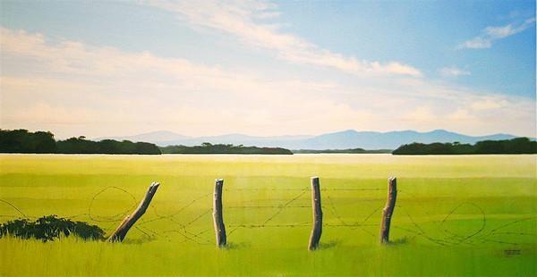 Landscape – RAFAEL ARAUJO