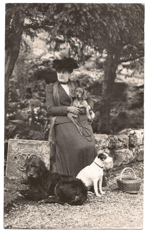 the dog lady